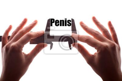 penis bez rozmiaru montażu
