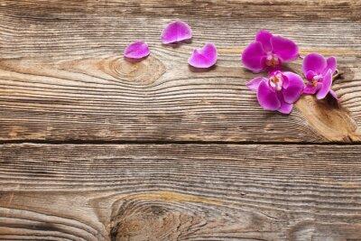 Fototapeta Różowe kwiaty orchidei na drewnianym tle
