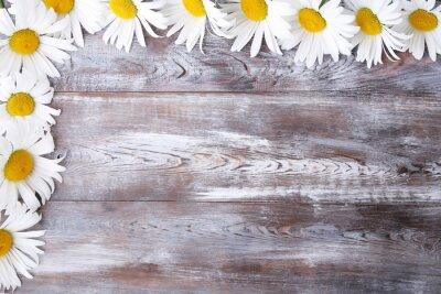 Fototapeta Rumianek kwiaty na drewnianym stole