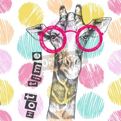 Fototapeta Rysowane ręcznie żyrafa. Jasne żyrafy okulary - hipster. Gorący czas. Lato nadrukiem na odzieży, butach, koszulce, raglanie. Wektor