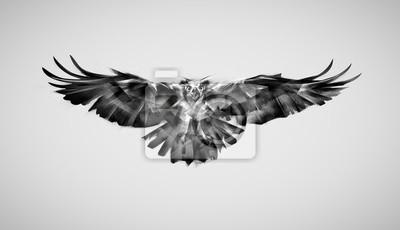 Rysunek Sokół Drapieżny Ptak W Locie Fototapeta Fototapety Rybołów