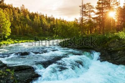 Fototapeta Rzeka w Norwegii