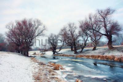 Fototapeta Rzeka w zimie