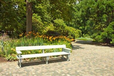 Fototapeta Samotne drewniane ławki w parku.