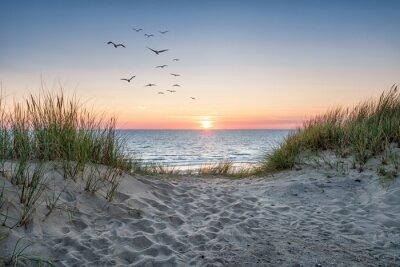 Fototapeta Sand dunes on the beach at sunset