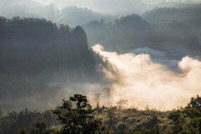 Fototapeta Scenic krajobrazu na mglisty dolin na wschodzie słońca