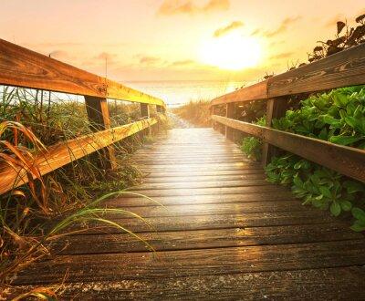 Fototapeta Ścieżka na plaży