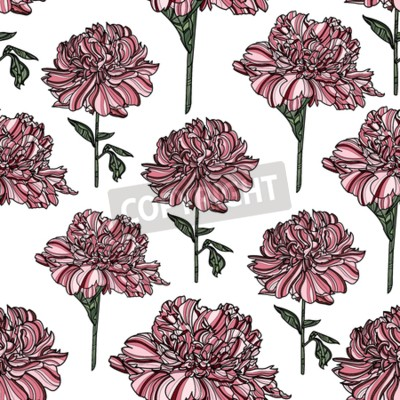 Fototapeta Seamless floral pattern with peony on white background.  Vector illustration. Typography design elements for prints, cards, posters, products packaging, branding.