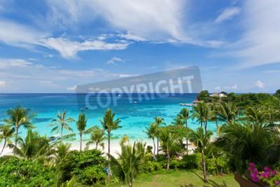 Fototapeta Seaview z góry, tropikalna plaża z palmami kokosowymi