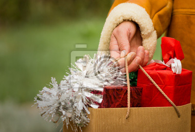 Fototapeta Shopping - Christmas time
