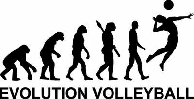Fototapeta Siatkówka Evolution