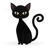 Czarny kot spojrzenie na pająk Fototapeta • Fototapety płochliwy,  pajęczyna, wiszący | myloview.pl