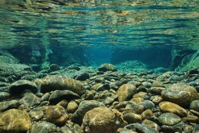 Fototapeta Skały podwodne na koryto z jasnego słodkowodnych, Dumbea rzeki, Grande Terre, Nowa Kaledonia