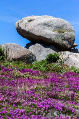 Fototapeta Skały różowego granitu wybrzeża w Bretanii