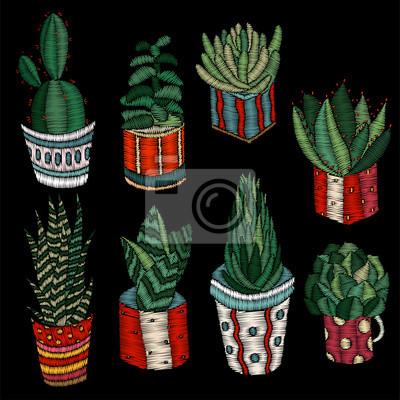 Fototapeta Soczewki Do Haftowania Kaktusy I Doniczki Hafty Kaktusów Dekoracja