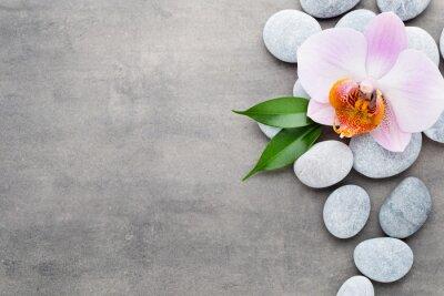 Fototapeta Spa orchidea obiekty tematów na szarym tle.