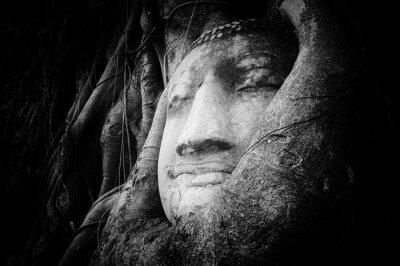 Fototapeta Spokojny i spokojne oblicze Buddy wyryte na starożytny kamień