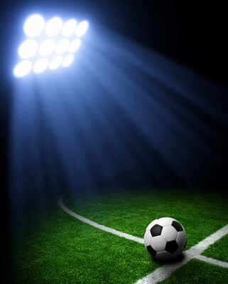 Fototapeta Stadion piłkarski
