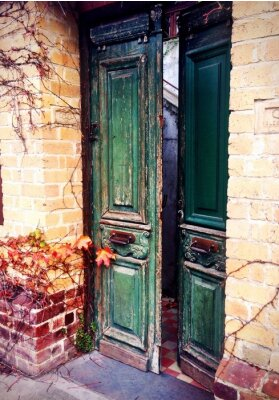 Fototapeta stare drzwi otwarte