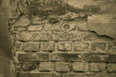 Fototapeta Stary mur