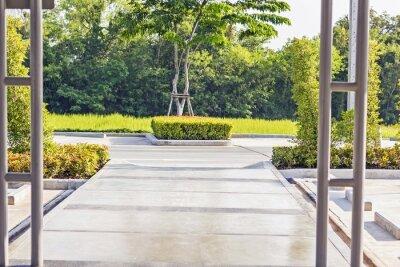 Fototapeta Stepping konkretną ścieżkę w spokojnej, zielonej Garden