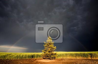 Fototapeta Storm Clouds Kanada