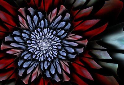 Fototapeta Streszczenie Fractal kwiat