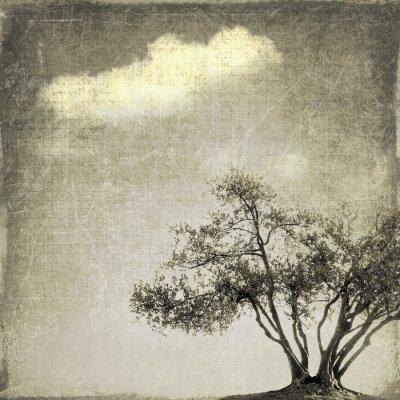 Fototapeta Surrealistyczny krajobraz z jednego drzewa w odcieniach sepii