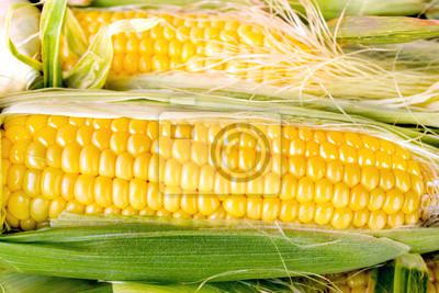 Fototapeta Świeże kolby kukurydzy organiczny