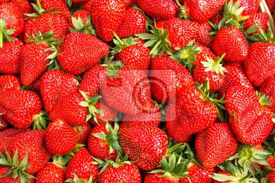 Fototapeta Świeże truskawki organicznych