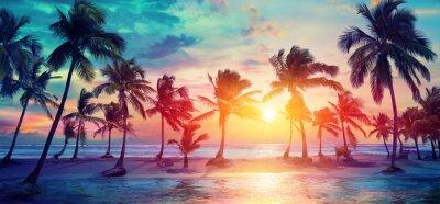 Fototapeta Sylwetki palmy na tropikalnej plaży o zachodzie słońca - nowoczesne kolory Vintage