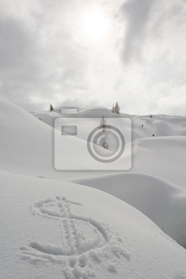 Fototapeta Symbol dolara na śniegu