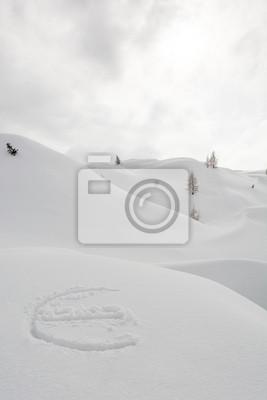 Fototapeta Symbol euro na śniegu