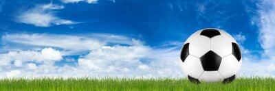 Fototapeta Szeroki retro piłka nożna na trawie banner przed niebieskim pochmurne niebo