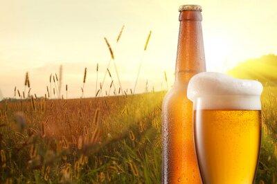 Fototapeta Szklanka piwa i butelki z pola pszenicy i słońca