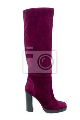 31accab752a8c Fototapeta Szpilki zimy kobiety buty od zamszowej skóry odizolowywającej na białym  tle