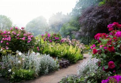 Fototapeta Sztuka kwitnie rano w angielskim parku