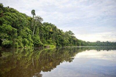 Fototapeta Tambopata Province