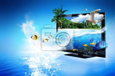 Telewizja 3D - magiczny świat przyrody