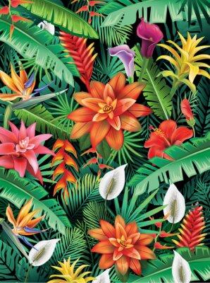 Fototapeta Tło z tropikalnych kwiatów
