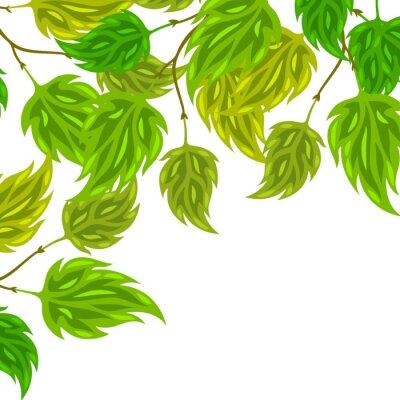 Fototapeta Tło z zielonych liści stylizowane na kartki