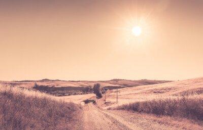 Fototapeta Toskański krajobraz lato