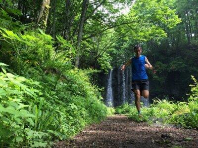 Fototapeta Trail Runner na leśnej ścieżce