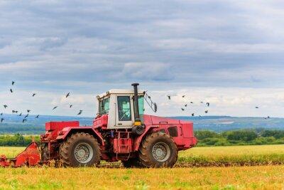 Fototapeta Traktor na polu