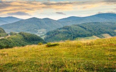 Fototapeta trawiasta łąka w górach na wschód słońca