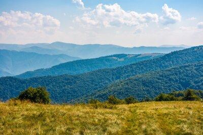 Fototapeta Trawiasty stok wzgórza na wysokich wysokościach grzbietu jesienią