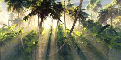 Fototapeta Tropical forest in the morning sun, jungle in the fog, palm trees in the haze, 3D rendering