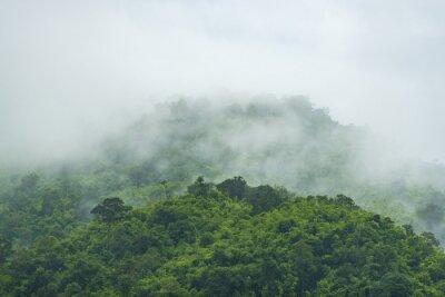 Fototapeta Tropical Mountain View w godzinach porannych, Tajlandii