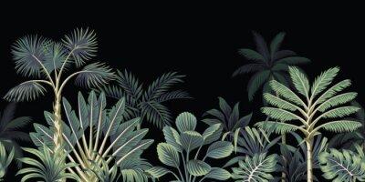 Fototapeta Tropical night vintage palm tree, banana tree and plant floral seamless border black background. Exotic dark jungle wallpaper.