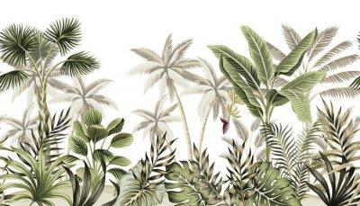 Fototapeta Tropical vintage botanical landscape, palm tree, banana tree, plant floral seamless border white background. Exotic green jungle wallpaper.
